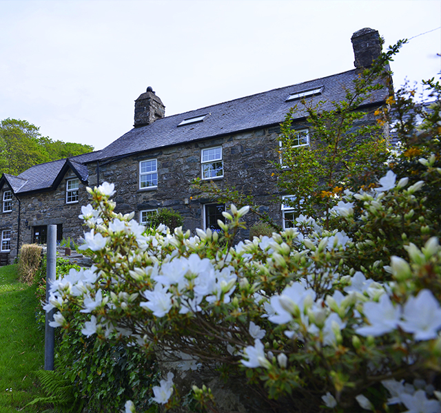 farmhouse-bed-breakfast
